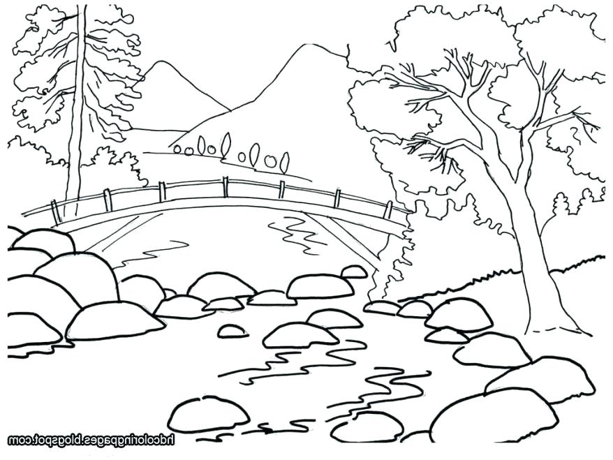 878x659 Oak Tree Coloring Page Tree Coloring Pages Together With Tree