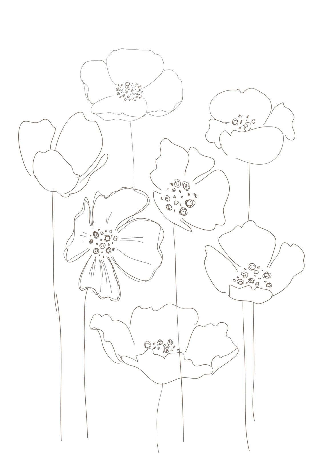 1131x1600 Poppies Flowers Poppies Floral Drawing, Drawings