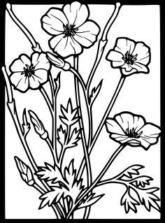 236x319 Poppy Flower Drawing Poppy Clipart Etc Susie's 1944 Board