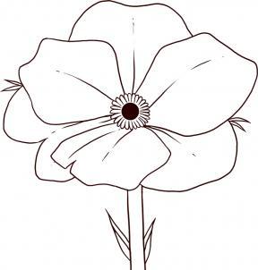 288x302 How To Draw Poppy How To Draw Doodles, Flowers