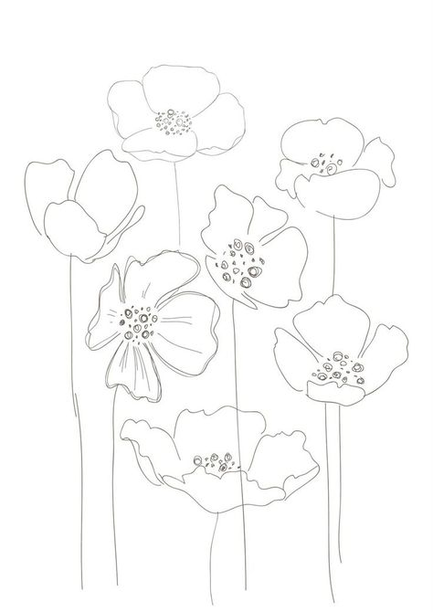 474x670 Poppy Drawing Watercolor Poppies Poppy Drawing