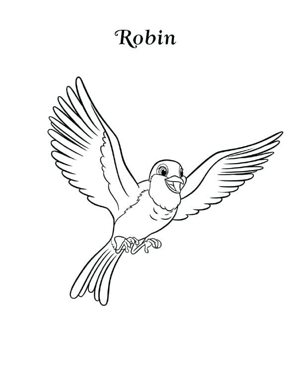 600x776 Robin Bird Coloring Pages Happy Robin Bird Coloring Page Red Robin