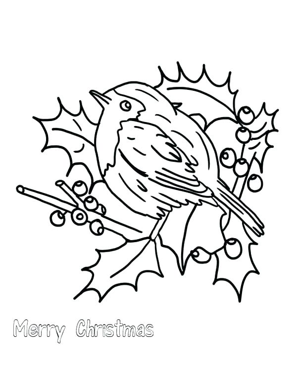 600x776 Robin Bird Coloring Pages Top Rated Robin Coloring Pages Pictures