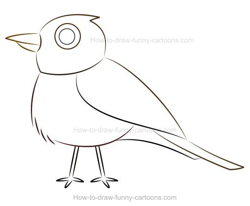510x420 How To Draw A Cartoon Robin