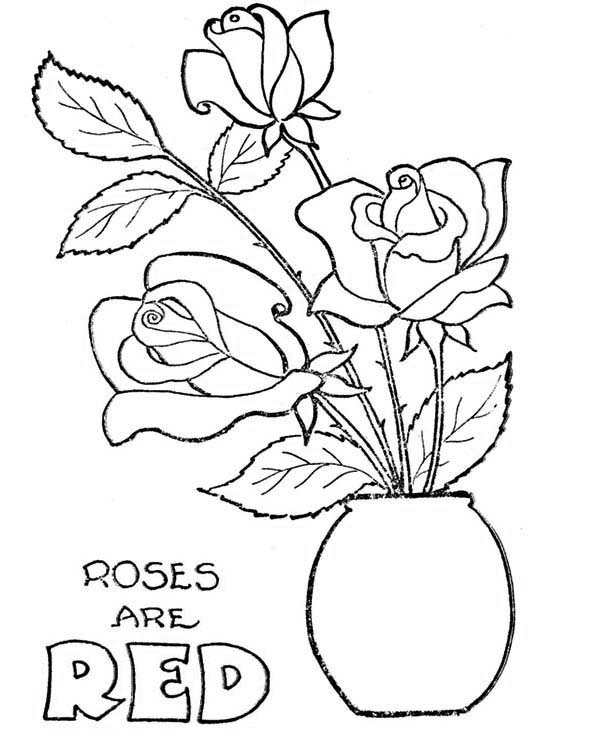 600x734 Rose In Flowerpot Coloring Page