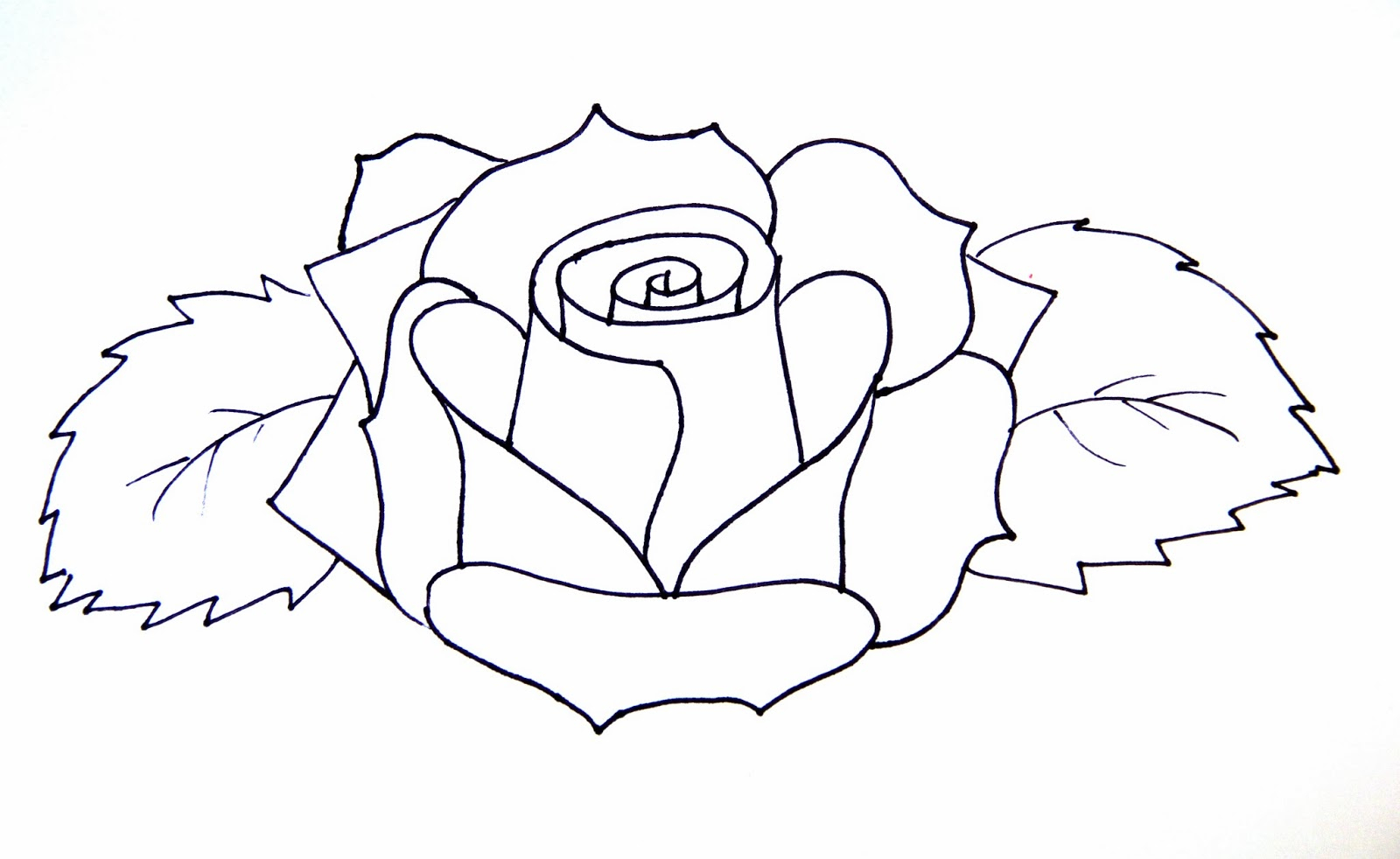 1600x982 Simple Rose Drawing Step By Step Hoontoidly Simple Rose Drawing