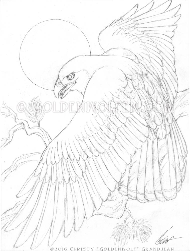 759x1000 Red Tail Hawk By Goldenwolf