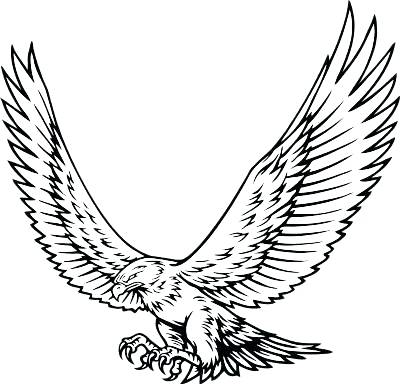 400x384 Red Tailed Hawk Coloring Page Species Included In Bird Coloring