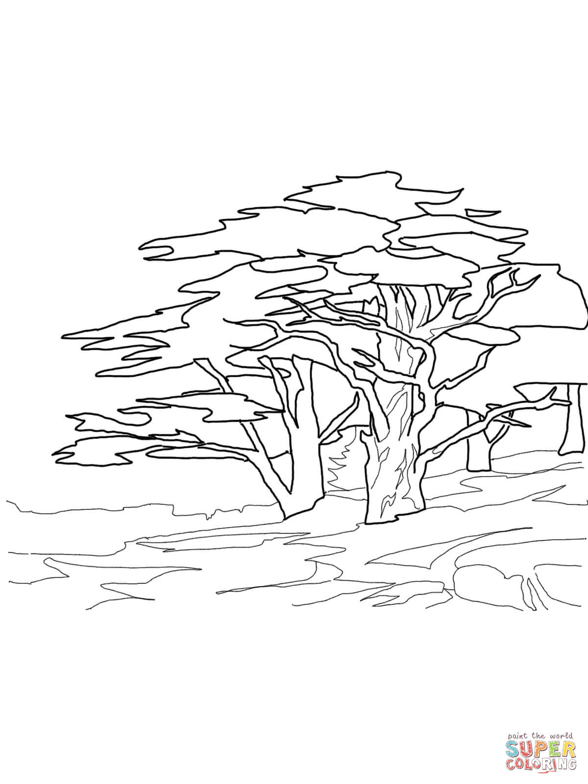 1200x1600 Giant Sequoia Sentinal Tree Coloring Page Free Printable