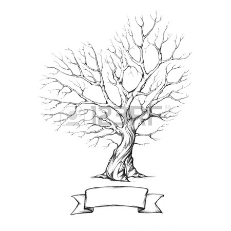 450x450 Gnarled Tree Images Amp Stock Pictures. Royalty Free Gnarled Tree