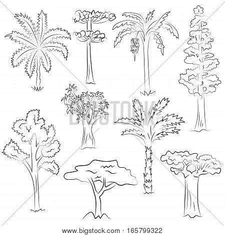 450x470 Hand Drawn Set Trees. Doodle Vector Amp Photo Bigstock
