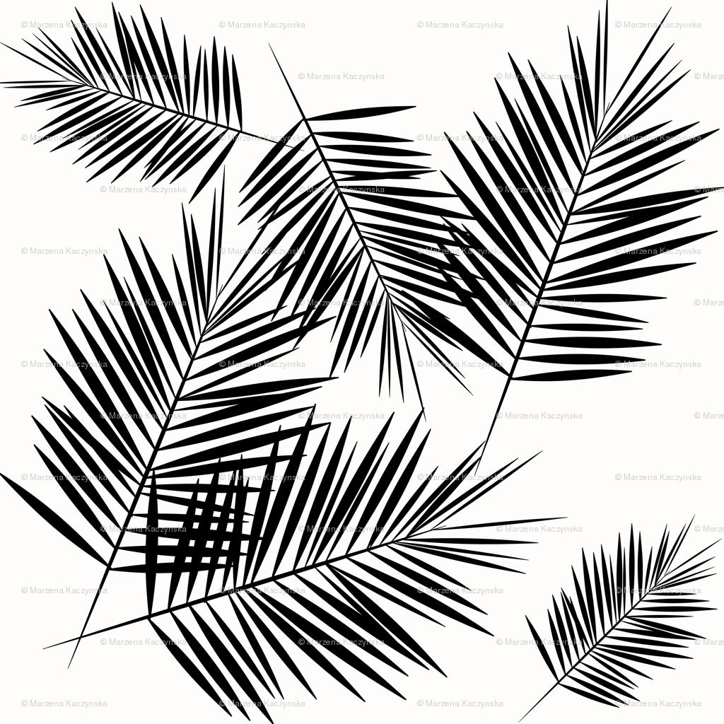1024x1024 Palm Leaf