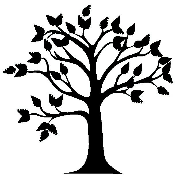 619x608 Tree Clipart Black And White Free