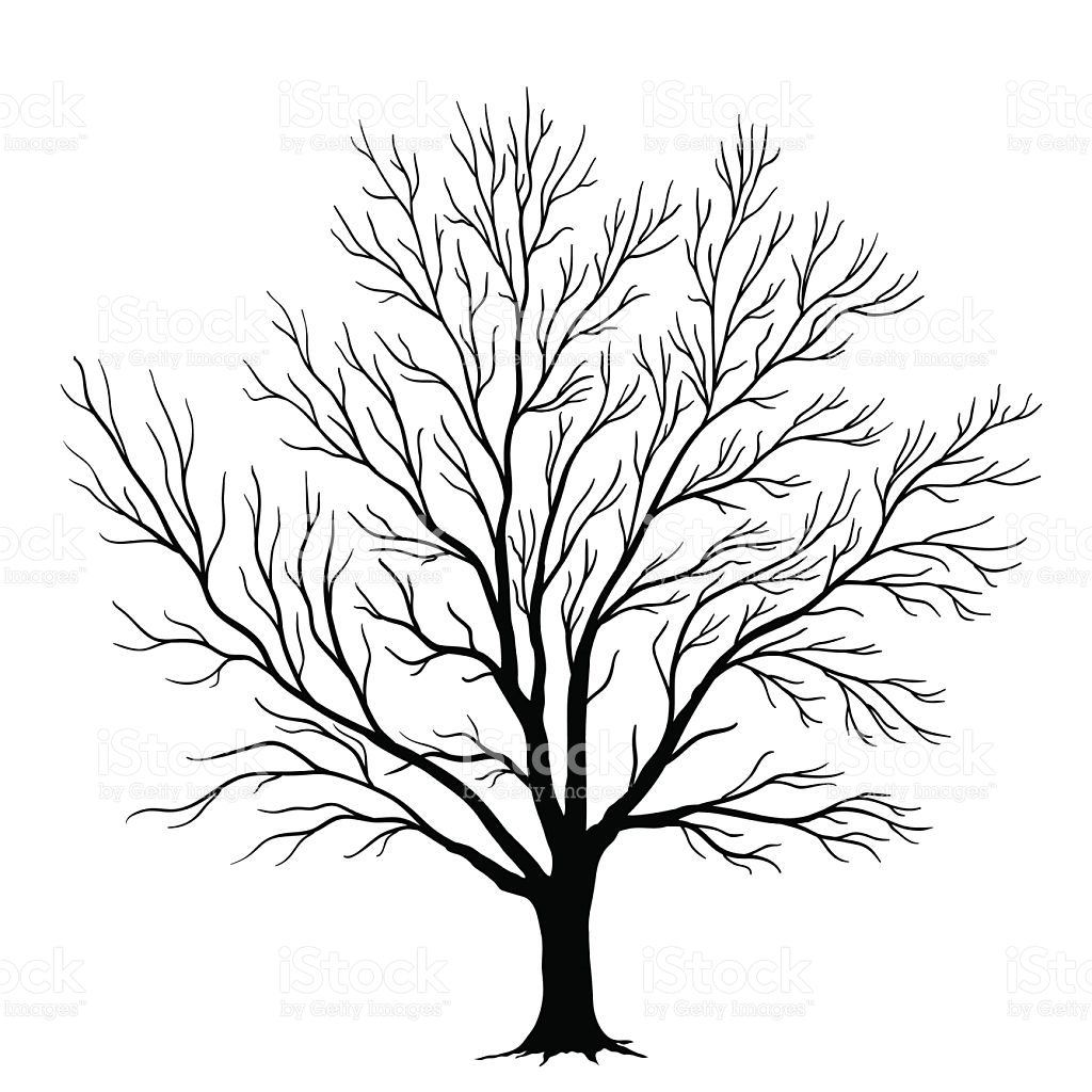 1024x1024 Tree Silhouette Vector
