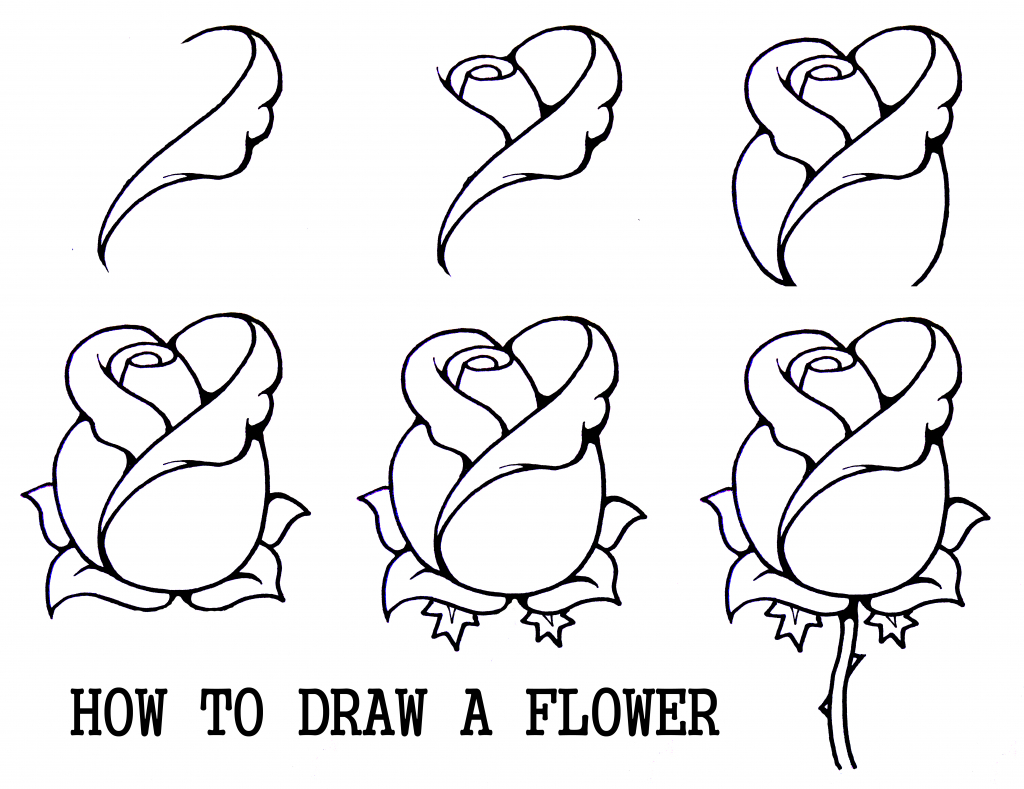 1024x789 Flower Drawing Reference Easy Lotus Flower Drawings Art Journals