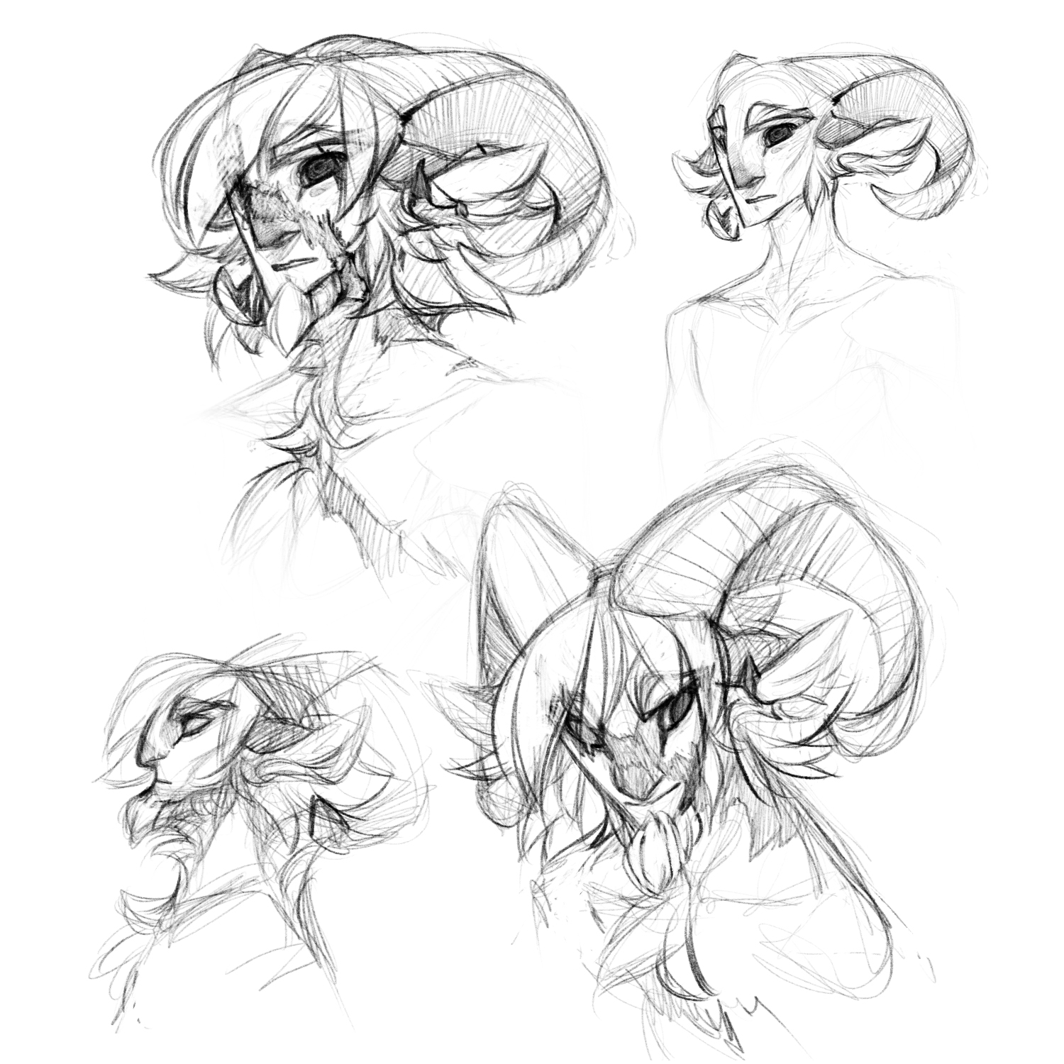 1500x1500 Baylian Head Reference Sketches Weasyl