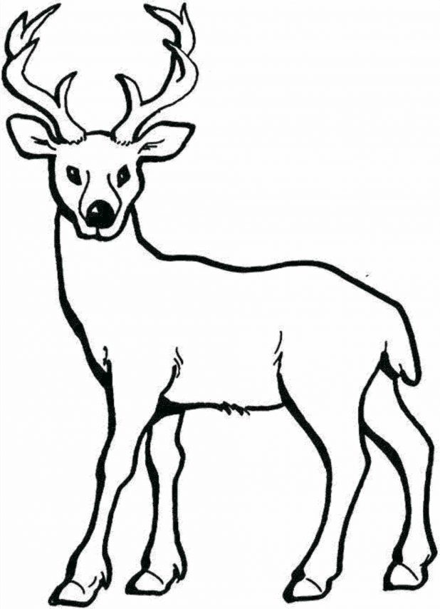 618x854 Reindeer Silhouette Stencil Outline Drawing Headband Free Vector