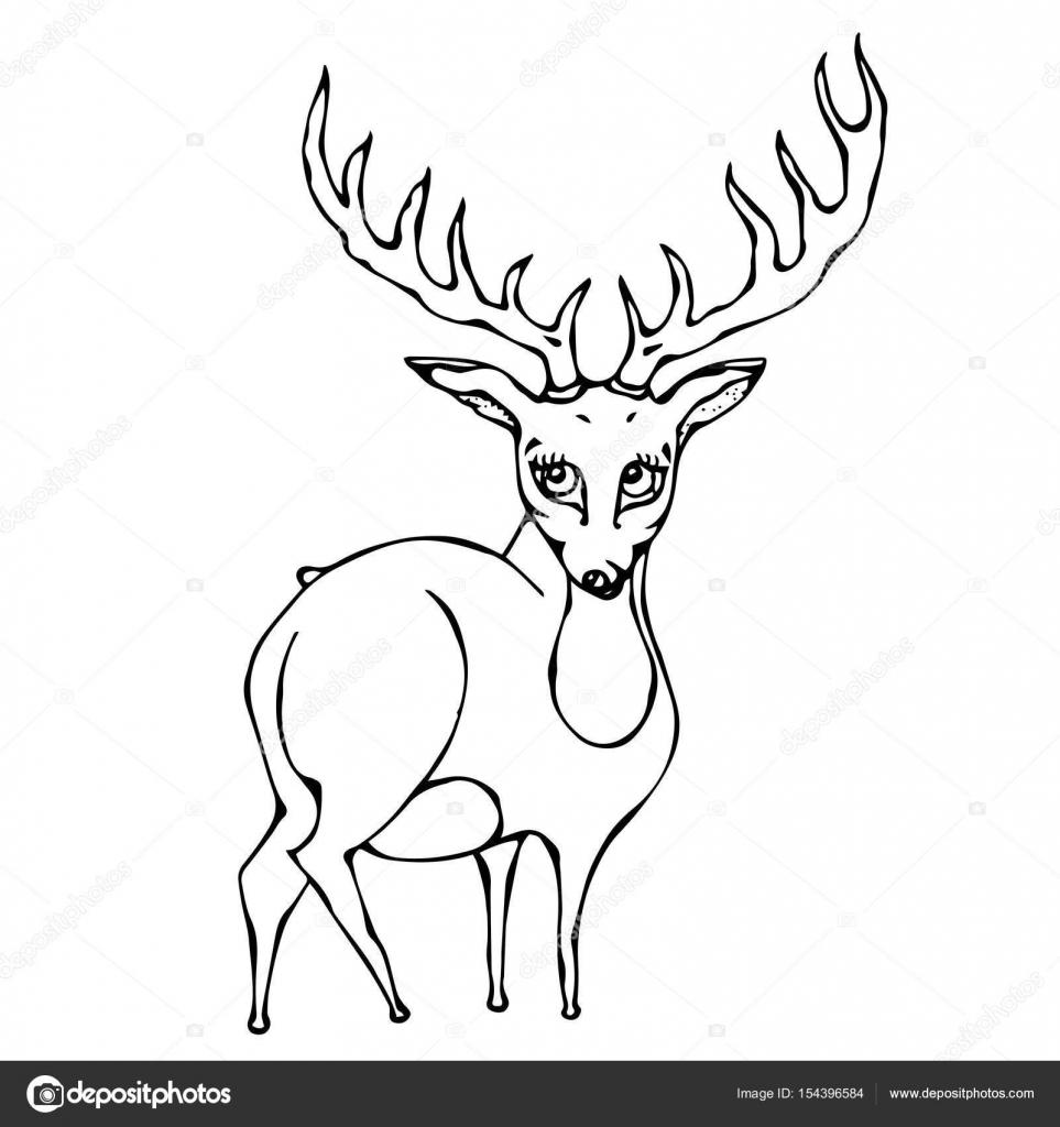 963x1024 Cute Deer Reindeer Caribou Cartoon Caracter. Isolated On A White