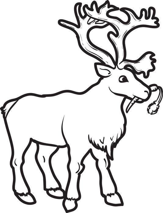 Reindeer Cartoon Drawing At Getdrawings Com Free For Personal Use