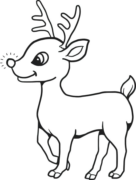 Reindeer Drawing