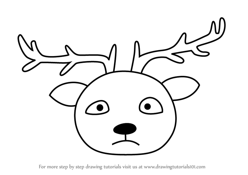 800x567 Learn How To Draw A Barasingha Face Kids (Animal Faces