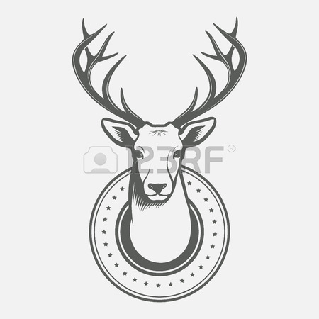 Reindeer Head Drawing