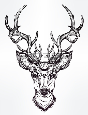 346x450 Colorful Deer, Vector Royalty Free Cliparts, Vectors, And Stock