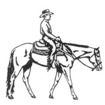 Reining Horse Drawing At Getdrawings Com Free For Personal Use