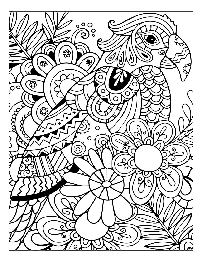 850x1100 Link Coloring Adult Coloring Books Stress Relief Flower And Nature