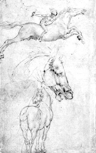 Renaissance Drawing