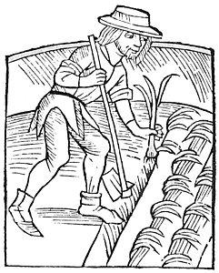 241x300 Early Renaissance Drawings Fine Art America
