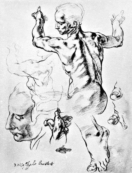 526x688 Michelangelo's Studies For The Libyan Sibyl Figure 1511