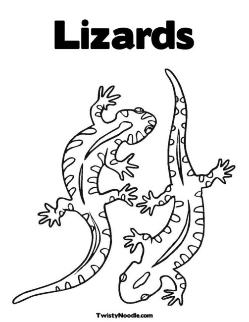 503x650 Reptile Coloring Pages 2 Nice Coloring Pages For Kids