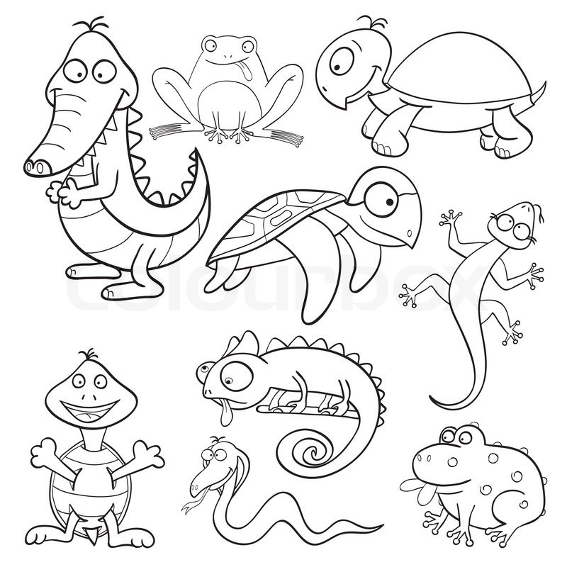 800x800 Coloring Book With Reptiles And Amphibians Stock Vector Colourbox