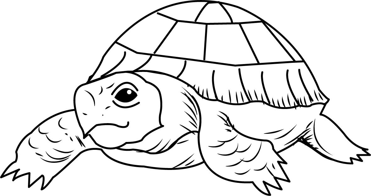 1180x624 Free Clip Art Animals Reptiles Tortoise2 (Bw)