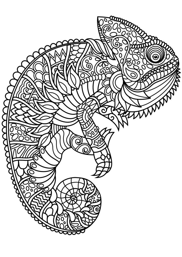 736x1040 Free Color Pages For Adults Reptiles Magazine