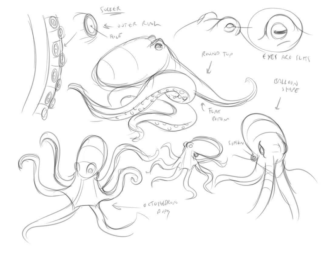 1078x833 Octopus Drawing Tutorial