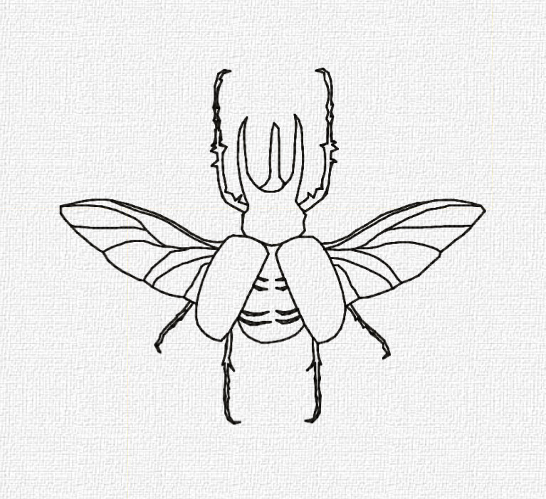 stag beetles coloring page