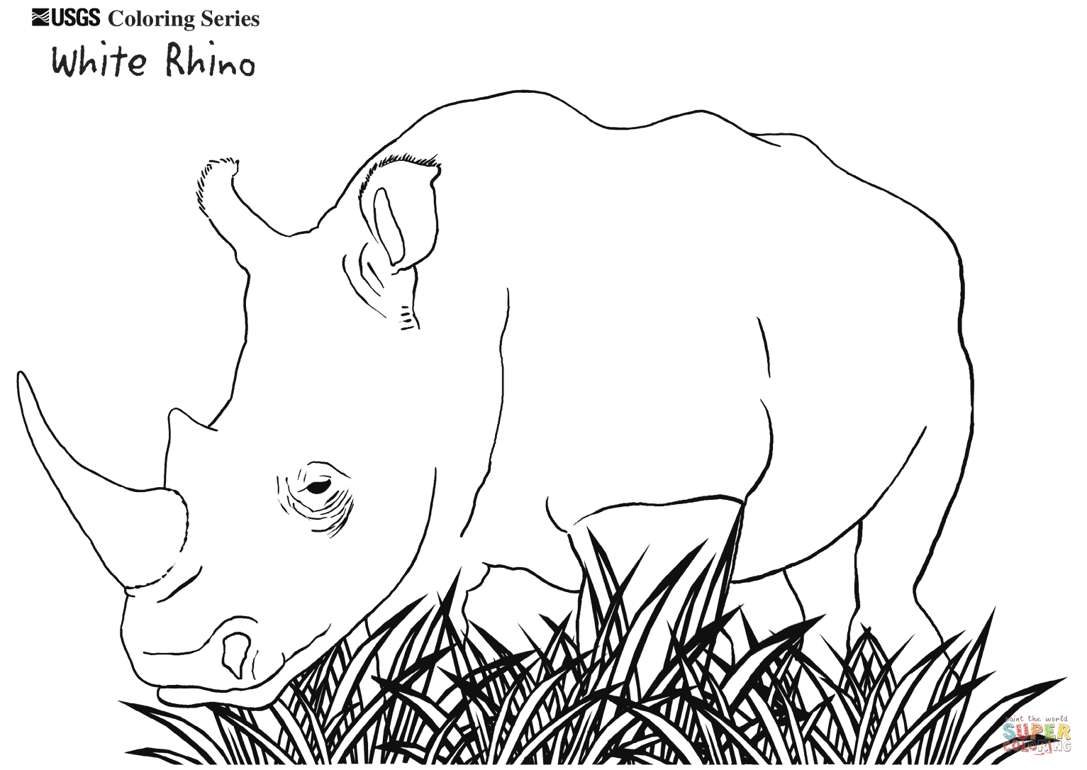 1533x1086 white rhino coloring page free printable coloring pages