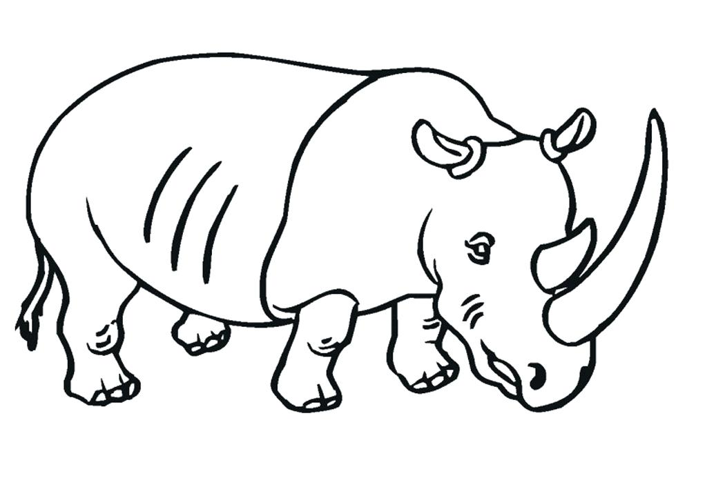 rhinoceros coloring page - rhino line drawing at free for personal