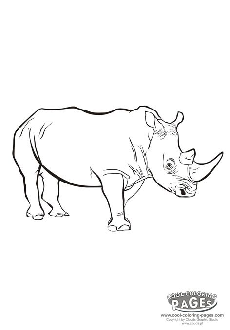 472x678 prehistoric mammals 472x678 prehistoric mammals 364x470 rhino coloring page