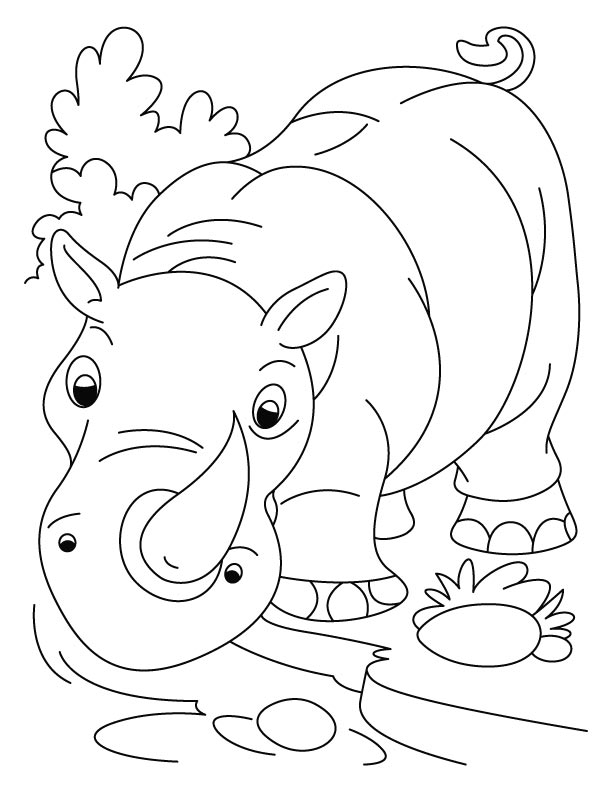 612x792 Nose Horned Rhinoceros Coloring Pages Download Free Nose Horned