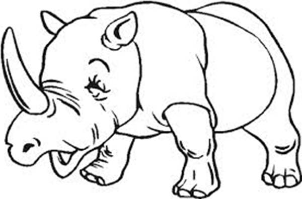 600x396 drawn rhino