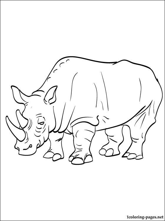 560x750 Drawn Rhino Coloring