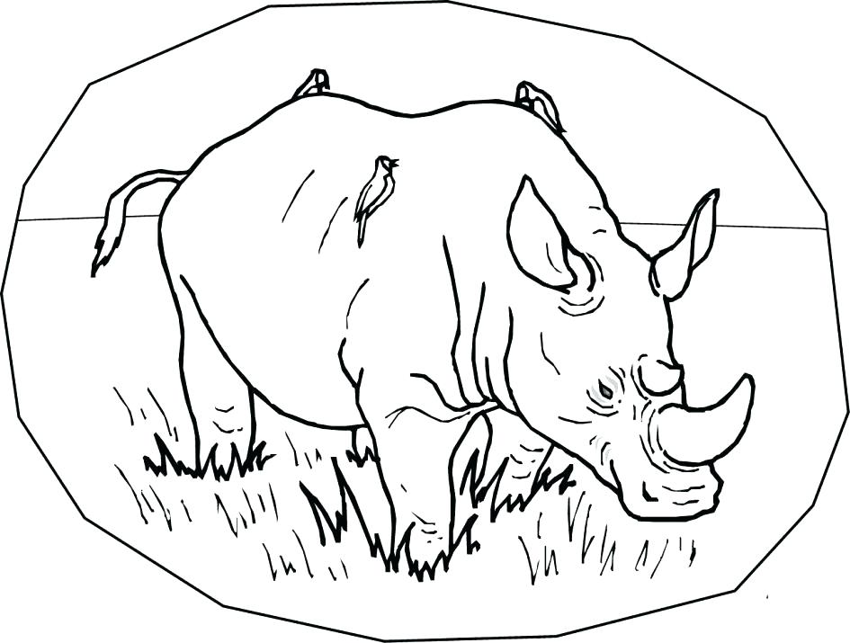945x715 Rhinoceros Coloring Page Rhino Coloring Page Rhino Coloring Page