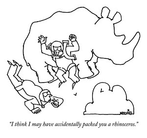300x281 Rhinoceros Drawings Fine Art America