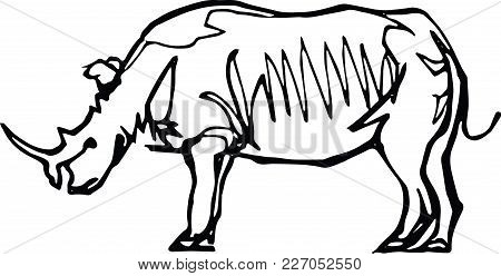 450x248 Rhinoceros Images, Illustrations, Vectors