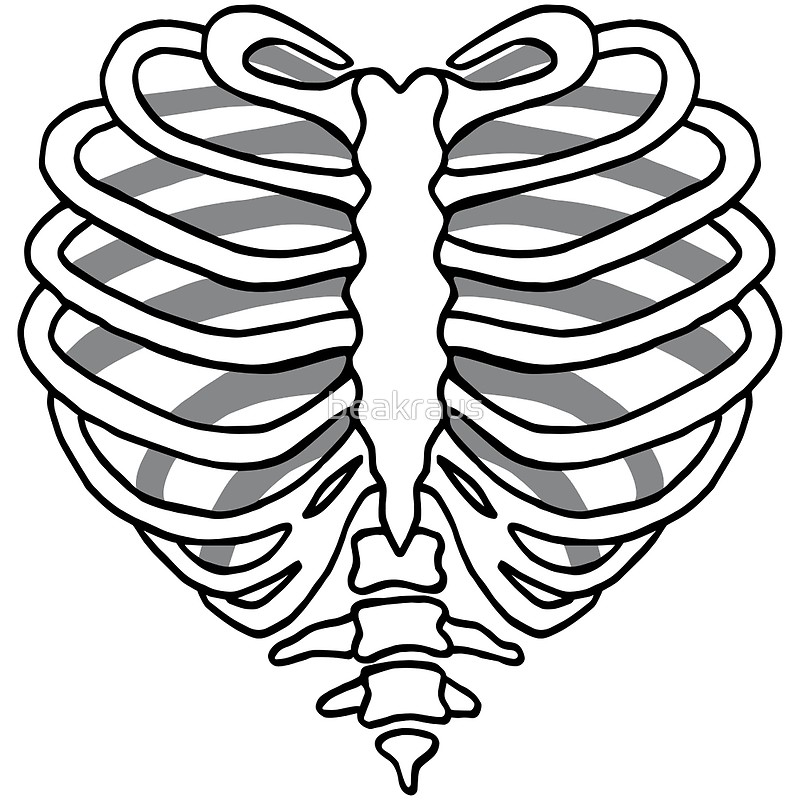 800x800 Skeleton Rib Cage Heart Art Prints By Beakraus Redbubble
