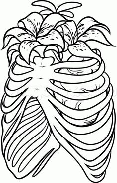 236x370 How To Draw A Rib Cage Tattoo, Step By Step, Tattoos, Pop Culture