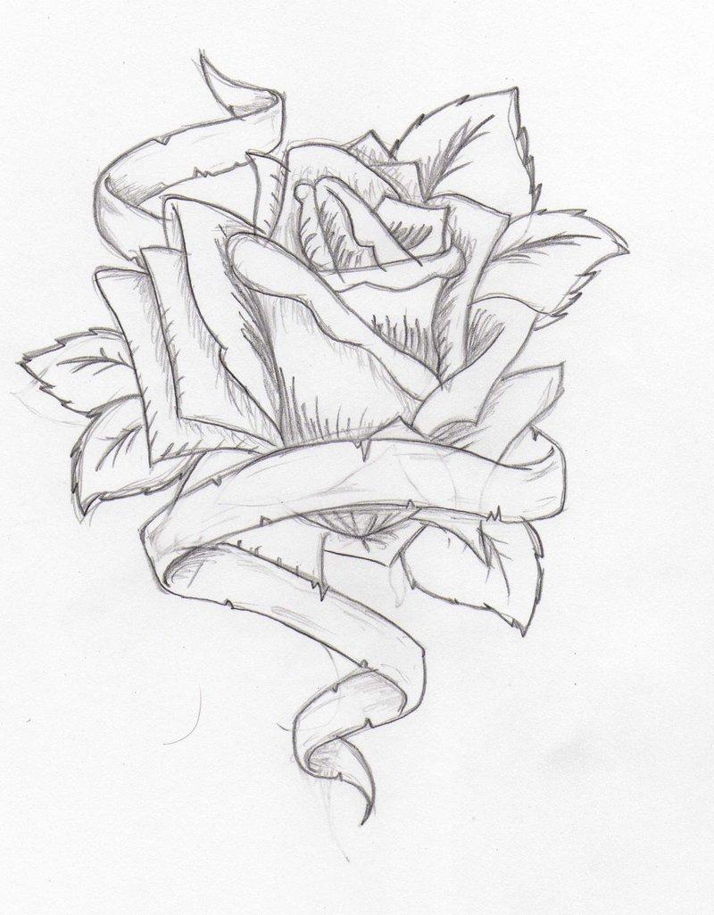 800x1026 Heart And Ribbon Drawings